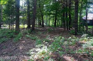 Property for sale at Ottawattamie Drive, Pentwater,  MI 49449