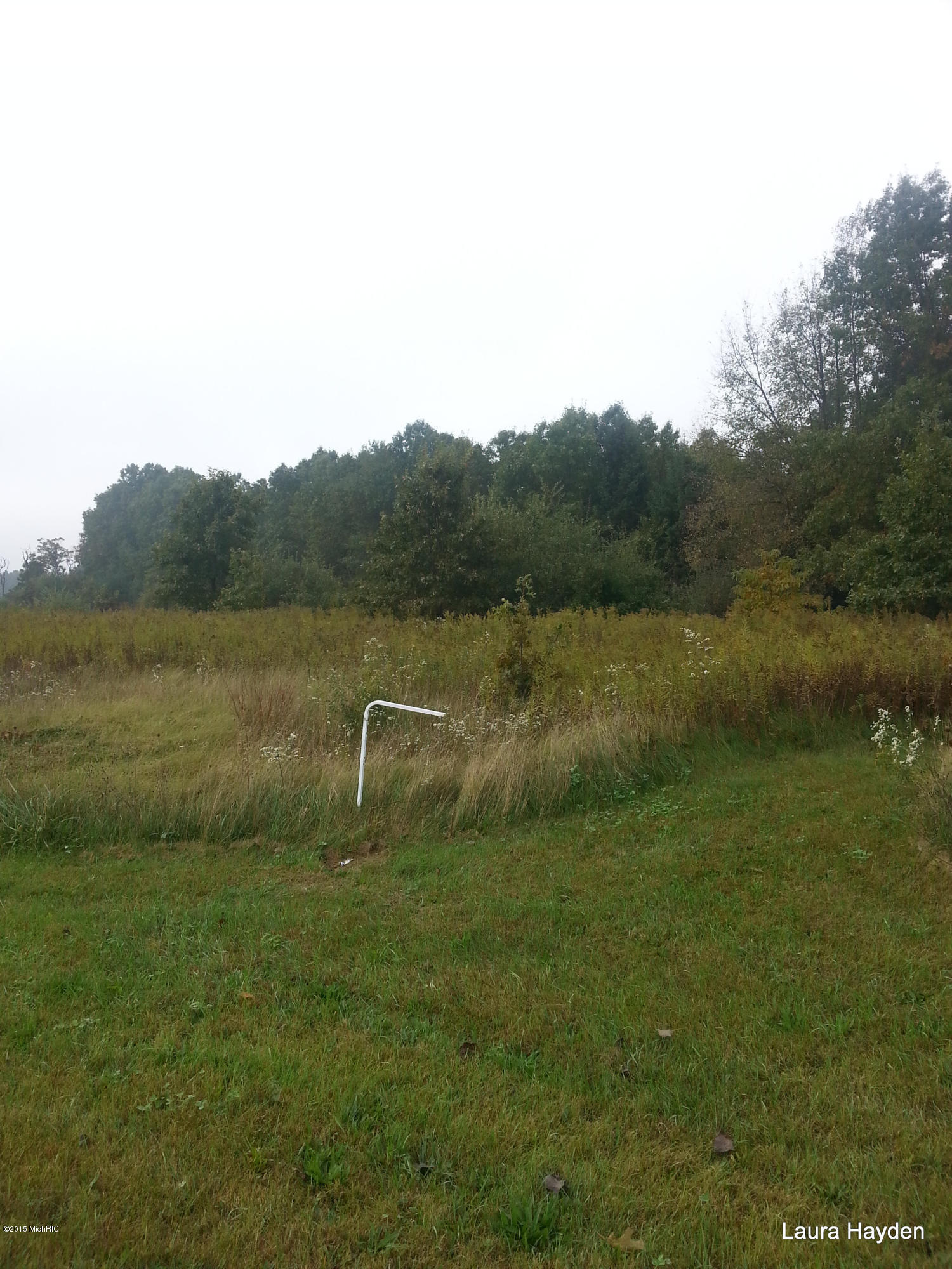 Vising Drive, Lowell, Michigan 49331, ,Land,For Sale,Vising,14013275