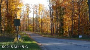 The Hills of Mitchell Creek, Big Rapids, MI 49307