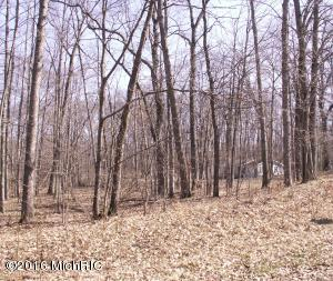 Property for sale at Lot 256 Chickasaw Trail, Branch,  MI 49402