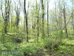 Property for sale at Long Lake Drive, Cassopolis,  MI 49031