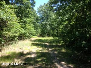 Property for sale at 0 32nd Street, Hamilton,  MI 49419