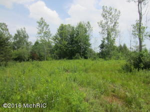 Property for sale at 4101 62nd Street, Holland,  MI 49423
