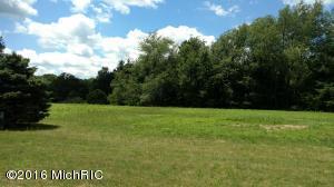 14035 Connor Farms Court, Cedar Springs, MI 49319