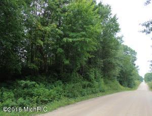 15626 9 Mile Road, Reed City, MI 49677