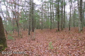 Property for sale at 0 E Baseline Road, White Cloud,  MI 49349