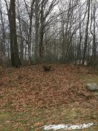 Property for sale at Lot 61 N Northern Lights, Mears,  MI 49436