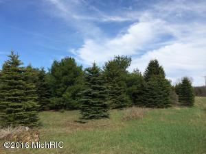 Land for Sale at V/L Chief Brethren, Michigan 49619 United States