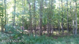 Property for sale at 5196 52nd Street, Fennville,  MI 49408