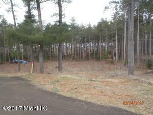 13839 Myers Woods Drive, Kent City, MI 49330
