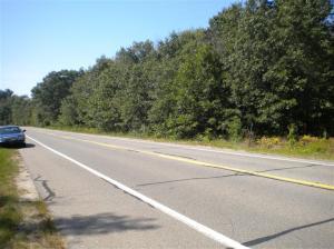 US 31 10 Acres, Pentwater, MI 49449