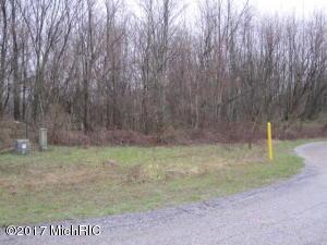 UNIT 13 FOREST SHORES Cassopolis, MI 49031