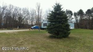 13224 Elm Avenue, Sand Lake, MI 49343