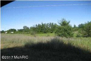 White Creek PAR D, Cedar Springs, MI 49319