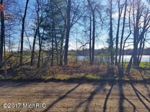 S Dyer Lake Drive, Falmouth, MI 49632