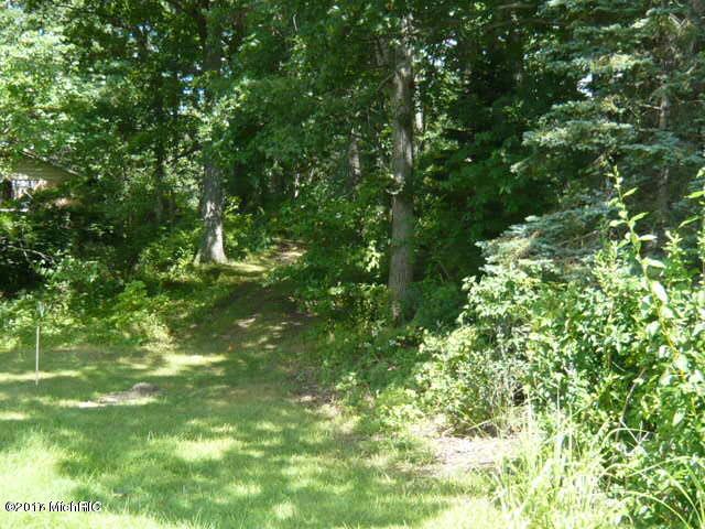 17459 Lakeview Vandalia, MI 49095 Photo 3