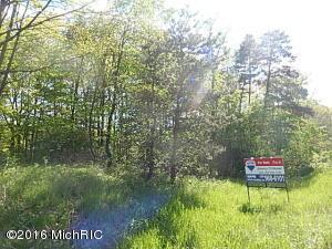 M-89, Richland, Michigan 49083, ,Land,For Sale,M-89,17022462