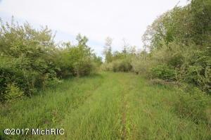 15969 Meddler Avenue, Cedar Springs, MI 49319