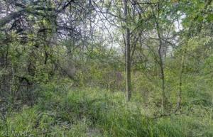 3150 Mt Olivet Road, Kalamazoo, MI 49004