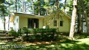 Property for sale at 2928 Wolf Lake Drive, Baldwin,  MI 49304