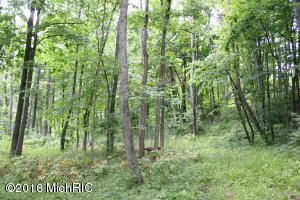 Property for sale at Tobias Road, Delton,  MI 49046