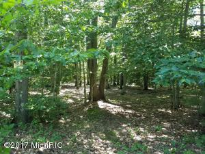 Property for sale at Duck Lake Road, Whitehall,  MI 49461
