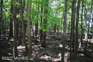 Property for sale at L 123 Shawnee, Pentwater,  MI 49449