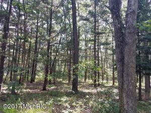Land for Sale at 3263 Skidmore Brethren, Michigan 49619 United States