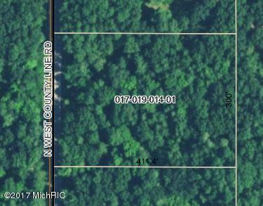 0 W COUNTY LINE, HOWARD CITY, MI 49329
