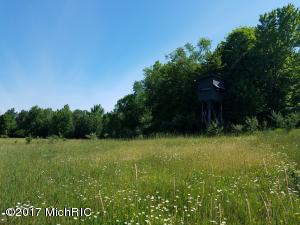 Farm / Ranch / Plantation for Sale at Ordway Free Soil, Michigan 49411 United States
