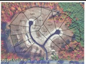 8 Alden Ridge, Lowell, MI 49331