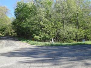 Property for sale at Longbridge, Pentwater,  MI 49449