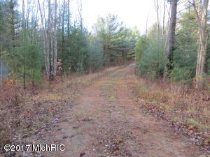 Property for sale at 3225 Duck Lake Road, Whitehall,  MI 49461