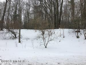 Property for sale at V/L Townline Road, Fountain,  MI 49410