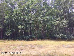 Property for sale at 0 Skeels Road, Montague,  MI 49437