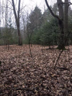 Property for sale at 0 Bayou Road, Montague,  MI 49437