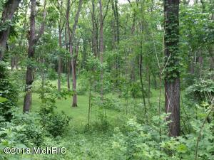 Property for sale at VL N 39th Street, Augusta,  MI 49012