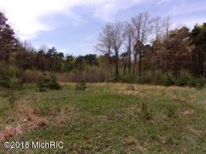 Lot 1 Serenity Pines Drive, Fennville, Michigan 49408, ,Land,For Sale,Serenity Pines,17016375