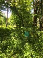 12 Misty Pines Dowagiac, MI 49047