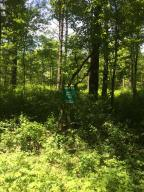 13 Misty Pines Dowagiac, MI 49047