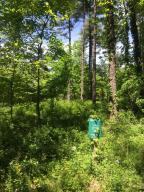 16 Misty Pines 16, 17, 18, 22 Dowagiac, MI 49047