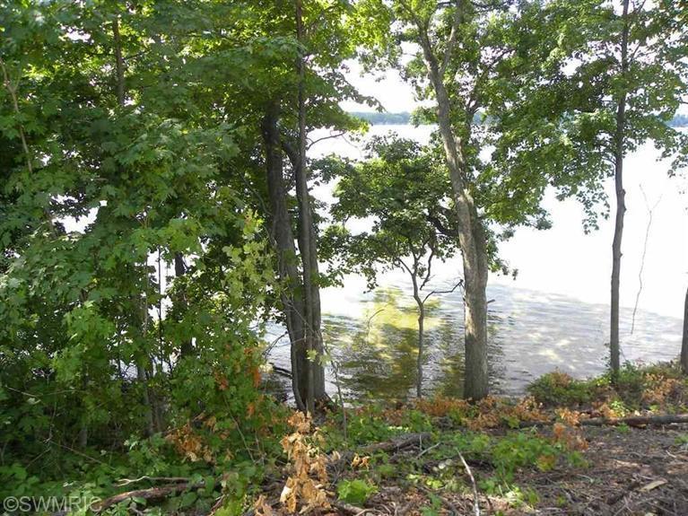 5 Lakeshore Dowagiac, MI 49047 Photo 7