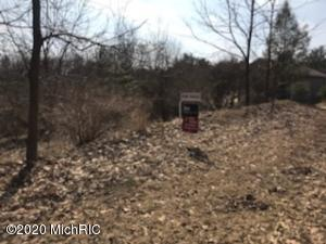 Parcel A 29 nd Ave., Gobles, Michigan 49055, ,Land,For Sale,29 nd Ave.,20011327