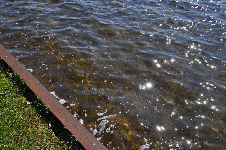 10827 Cora , Portage, MI 49002 Photo 8