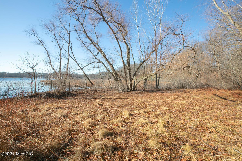 Parcel A Bair Lake Jones, MI 49061 Photo 3