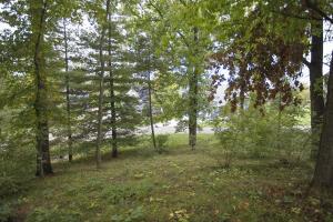 70937 Vista View Union, MI 49130