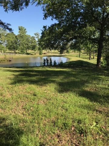 Large photo 1 of sold land at  Bay Ridge Dr , Dardanelle, AR