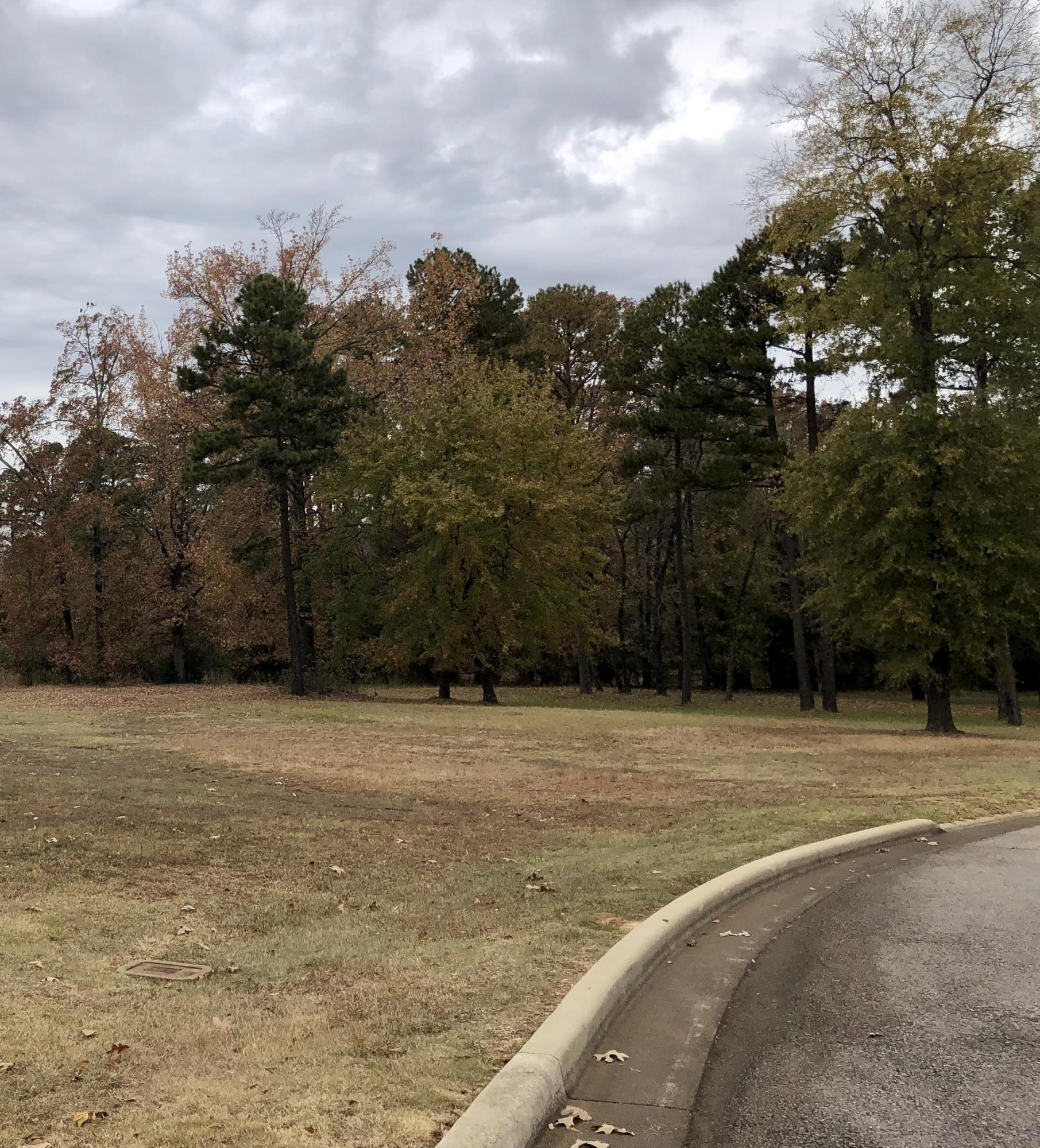 Large photo 9 of sold land at  Hilltop Summit Estates , Russellville, AR