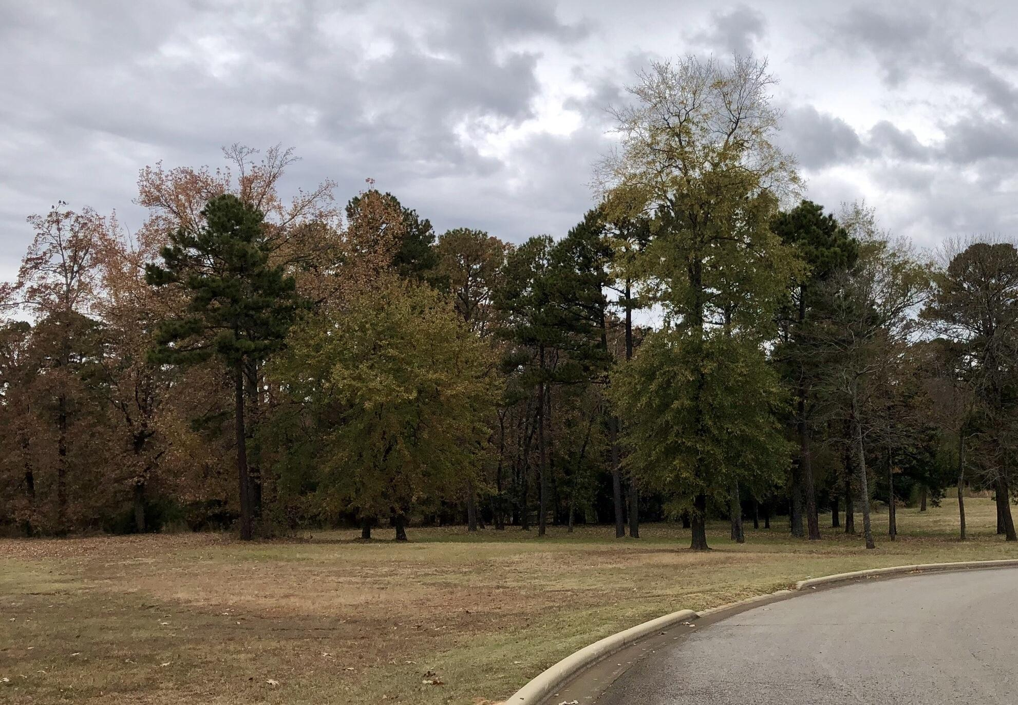 Large photo 2 of sold land at  Hilltop Summit Estates , Russellville, AR