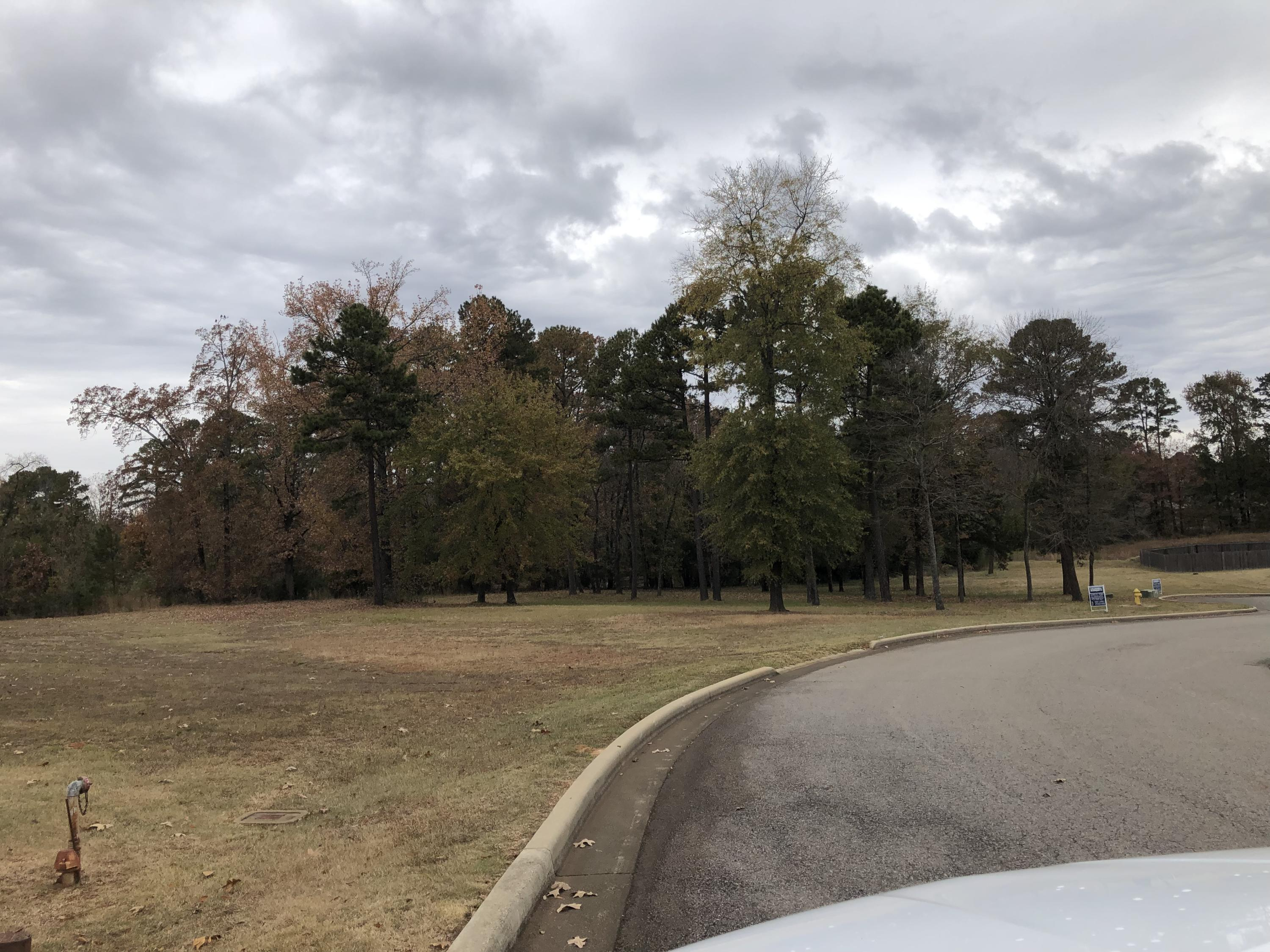Large photo 6 of sold land at  Hilltop Summit Estates , Russellville, AR